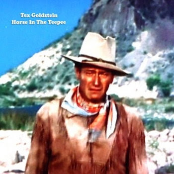 Tex Goldstein - Horse In The Teepee cover art