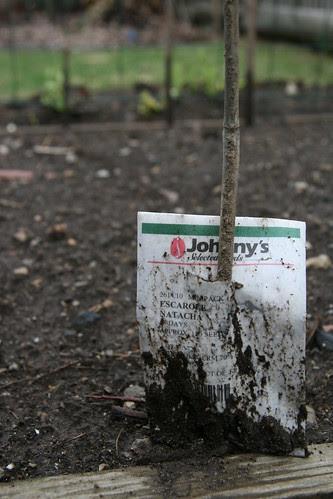 muddy row marker