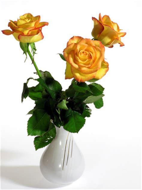 50th Wedding Anniversary Floral Arrangements Ideas   Our