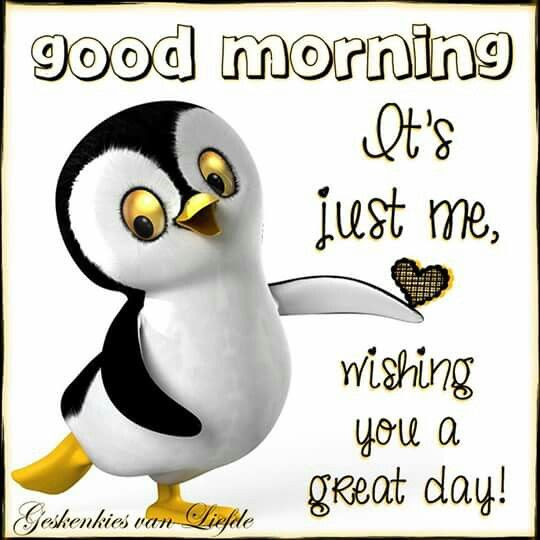 Good Morning Its Just Me Wishing You A Great Day Pictures Photos