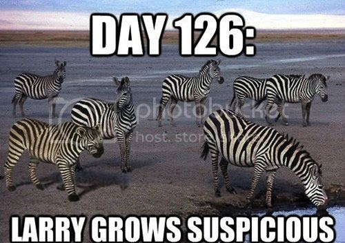 Gary Larson-like picture of zebras at a waterhole, along with a lion in black and white stripes, captioned 'Day 126: Larry Grows Suspicious