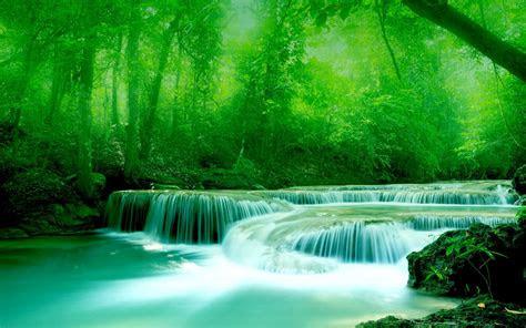 wallpaper river water rocks trees greenery
