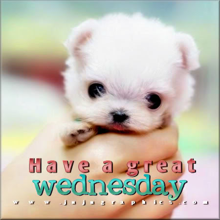 Have A Great Wednesday 58 Graphics Quotes Comments Images