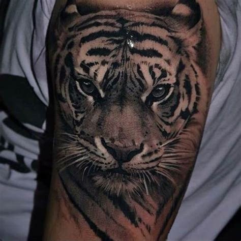 incredible  eye catching tiger tattoo designs