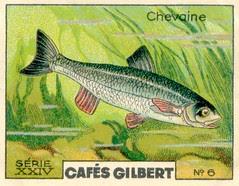 gilbert rivière 6
