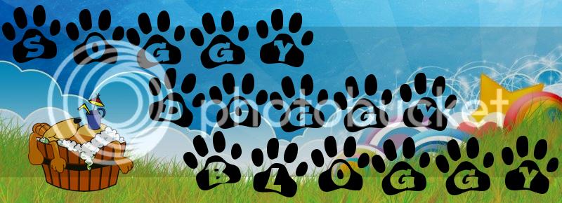 Soggy-Doggy-Bloggy