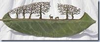 cut out leaf