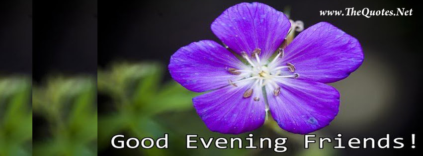Facebook Cover Image Good Evening Friends Thequotesnet