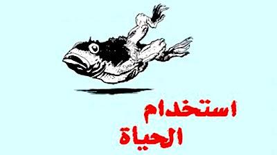Istakhdem al-Haya