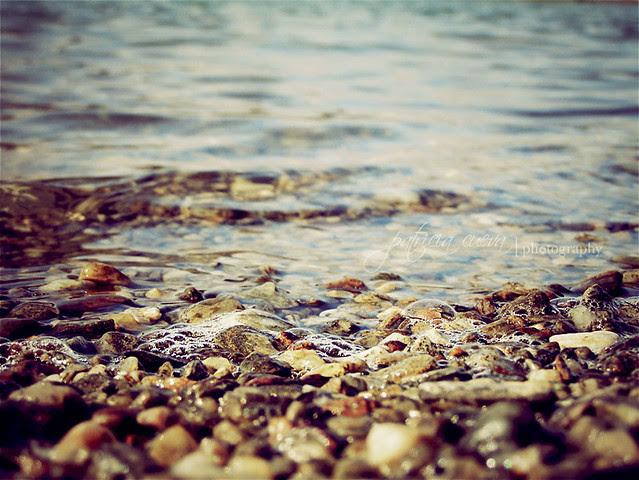entre el agua y el suelo