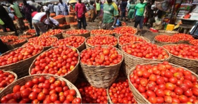 Ramadan: Prices Of Tomato, Pepper Rise By 60% In Lagos