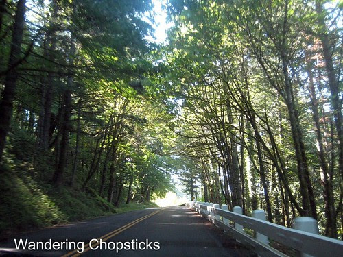 11 Chasing Waterfalls - Columbia River Gorge - Oregon 9