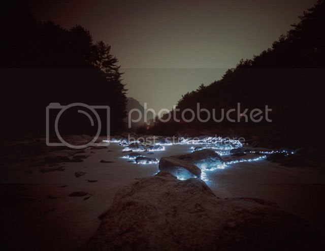 photo LightInstallationsbyLeeEunyeol-2_zps5e591af8.jpg
