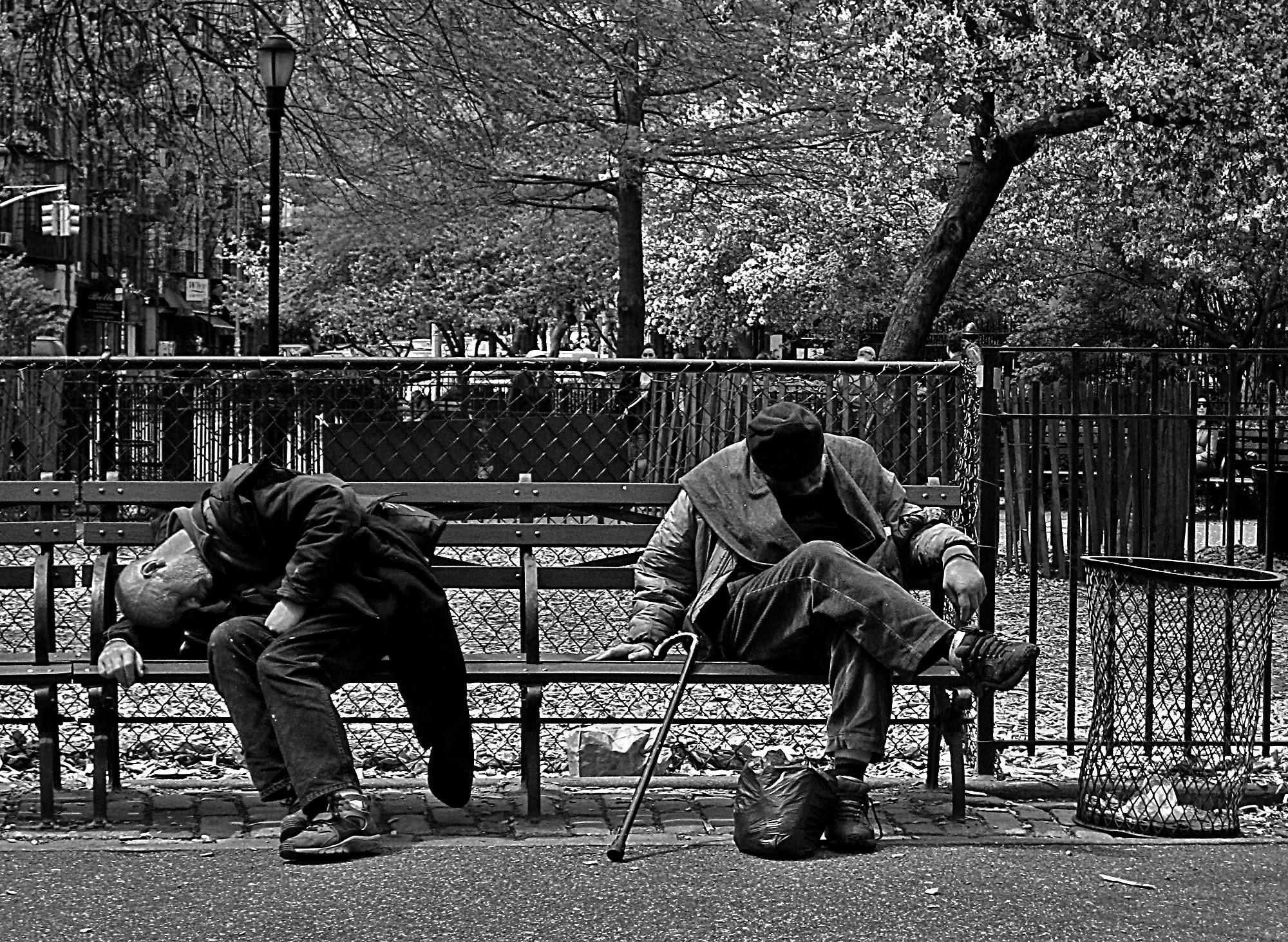 Springtime in Tompkins Square