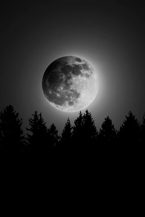 THE MOON HAS ITS OWN UNIQUE BEAUTY. IT COMES OUT AT NIGHT TO REPLACE THE SUN. ITS WHITE GLOW SHINES UPON US ALL. WITHOUT THE MOON, THE NIGHT WOULD BE DARKER AND SCARIER. THANK YOU MOON.