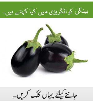 siblings means in urdu