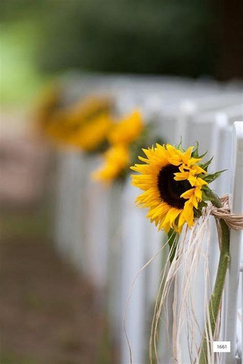 100 Bold Country Sunflower Wedding ideas   Flower