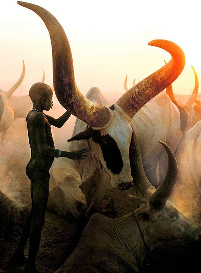 dinka-people-southern-sudan-angela-fisher-carol-beckwith-1