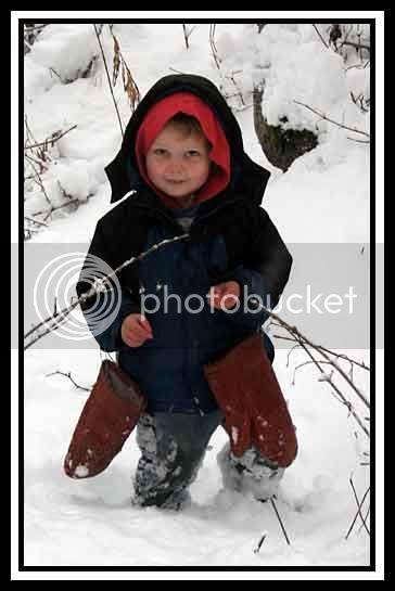 Zeke picking cranberries