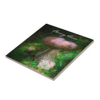 Woodland Mushroom - Penny Bun, Porcino