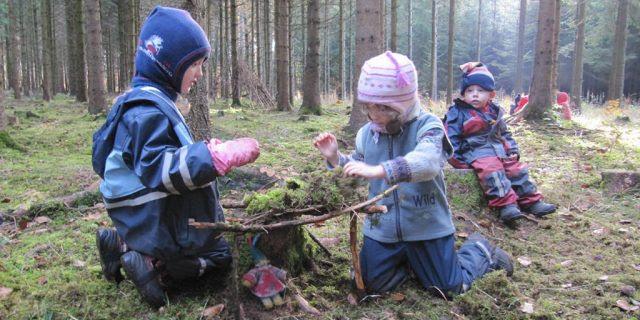 bosque-escuela