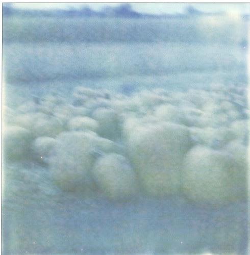 polaroids004