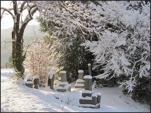 34 graves in sunshine
