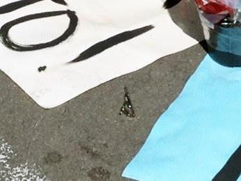 Kalyne Pereira deixou um prendedor de gravatas em meio ás flores e cartazes (Foto: Iara Lemos/G1)