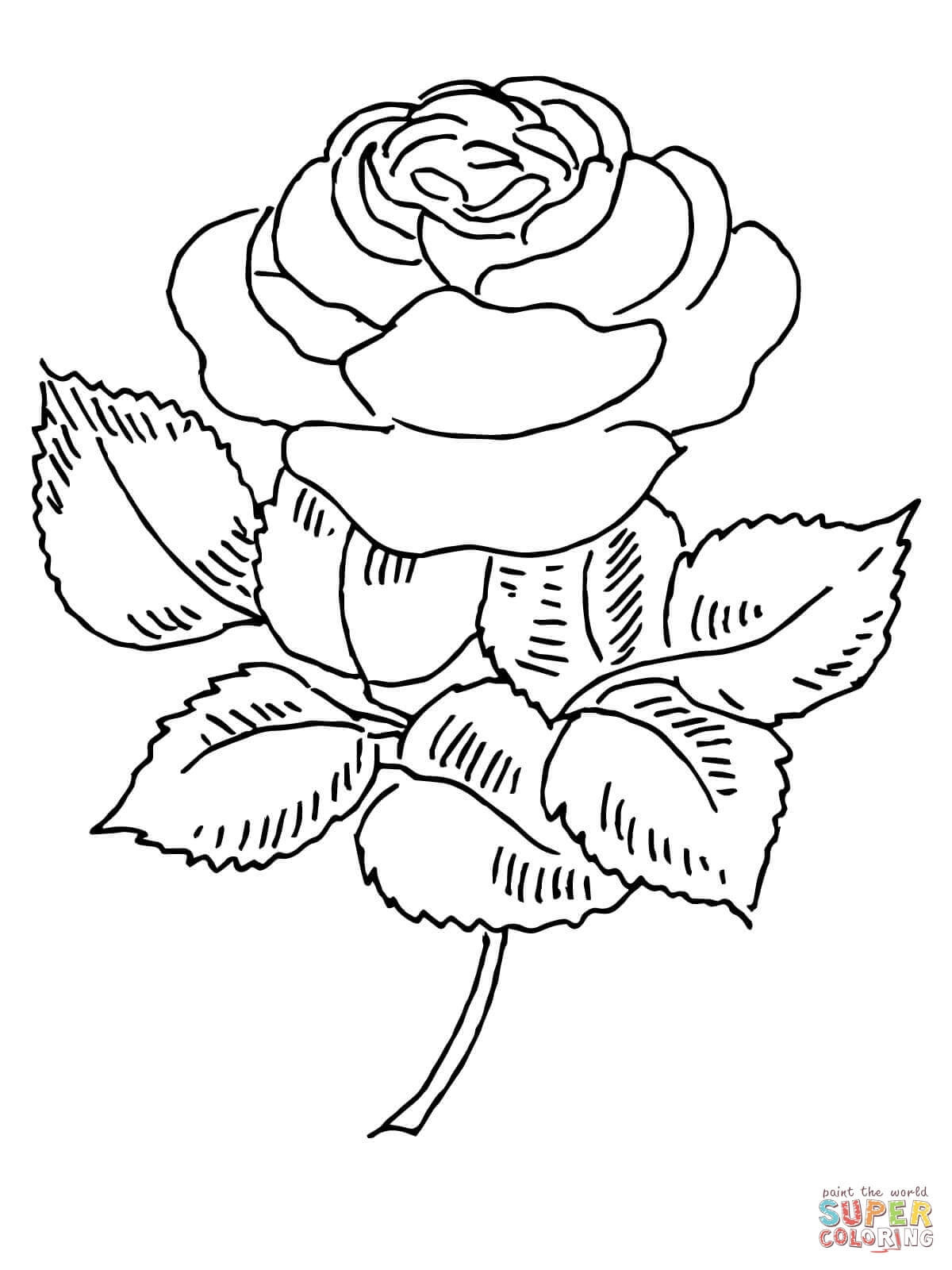 Coloring Pages For Elderly at GetDrawings | Free download