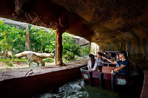 Global Travel Media » Blog Archive » Amazon River Quest Boat Ride In River Safari Opens To Public