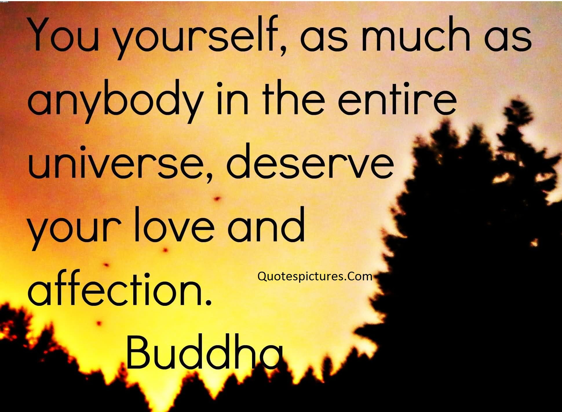 Affection Quotes The Entire Universe Deserve Your Love And