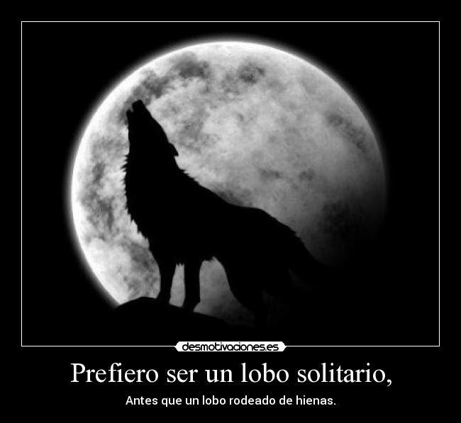 Prefiero Ser Un Lobo Solitario Desmotivaciones