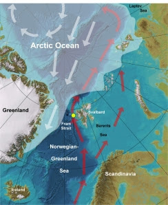Bathymetric map of the Norwegian-Greenland Sea and Arctic Ocean (base map: www.ibcao.org). White shading marks average summer sea ice cover. White arrows mark ice drift directions. Red arrows mark the transport path of warm Atlantic water entering the Arctic where it submerges under the cold, ice-covered surface layer. The yellow spot marks the site the sediment core used in the study was taken from. Image courtesy of Robert Spielhagen (IFM-GEOMAR, Kiel)