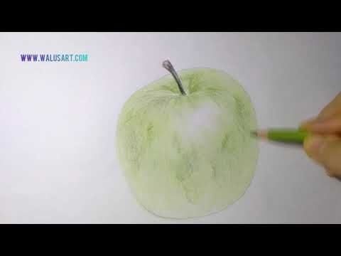 Mewarnai Gambar Apel dengan Pensil Warna