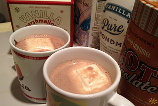 Salted Caramel Hot Chocolate - Williams Sonoma brand