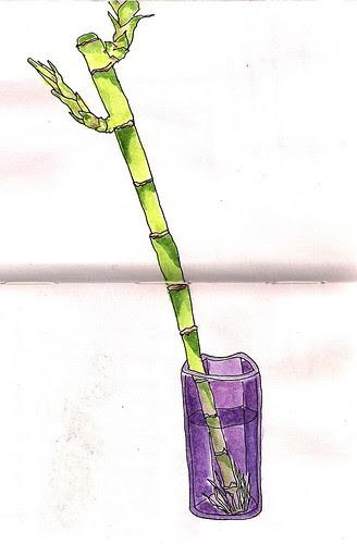 Bamboo in watercolor