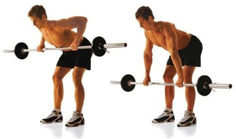 workout  bent  barbell row fitness