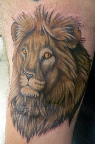 lion tattoos. The colors are amazing lions of their skin, mane, mouth,