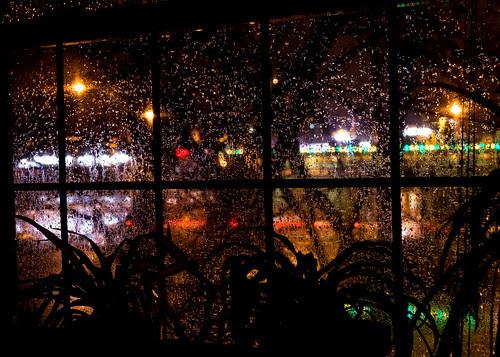 Window Silliness