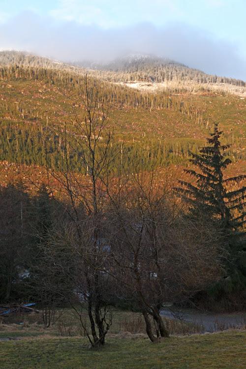 new snow and sunset on Kasaan Mountain, Kasaan, Alaska