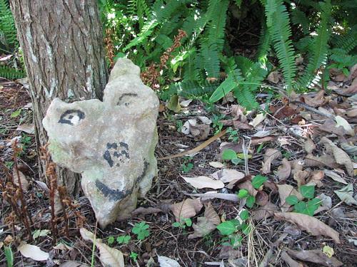 pedra humanizada