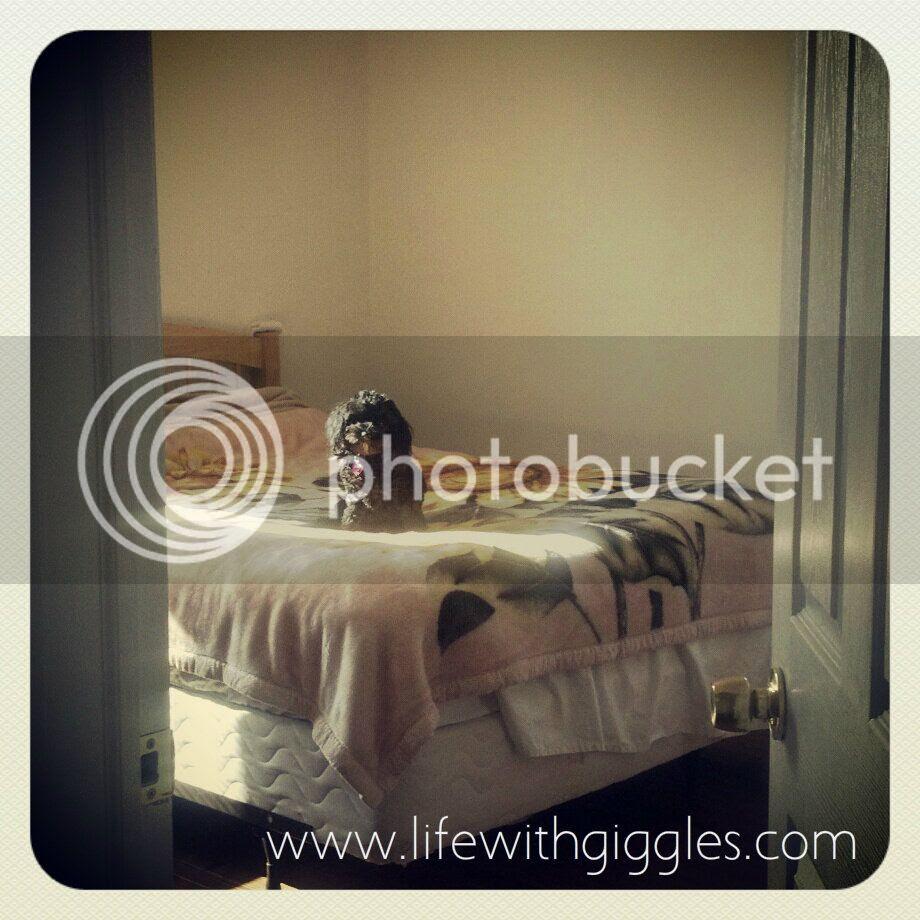 Sadie middle bed