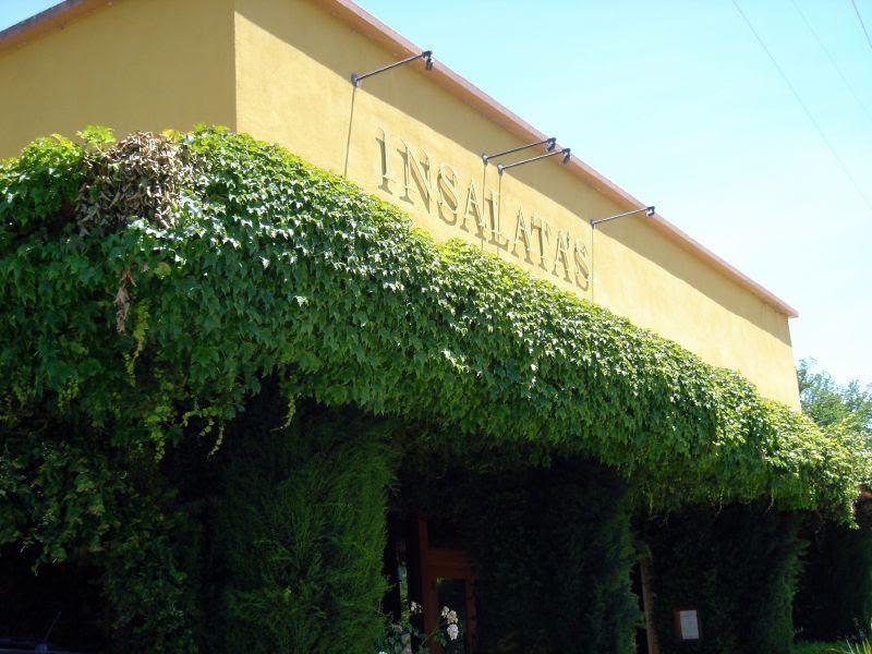Insalata's