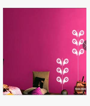Asian Paints Signature Walls in Ajmer rajasthan - Bharat Trading ...
