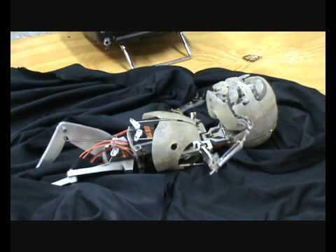 video donde se muestra un animatronic simulando un bebe