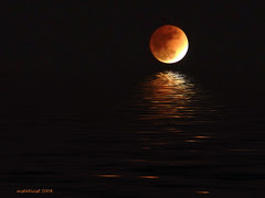 eclipsed moon flood