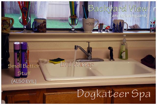 Dogkateer-Spa