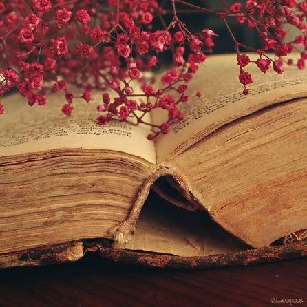 Θαυμαστό όραμα για την αξία των πατερικών βιβλίων… – Πώς οι δαίμονες τρέμουν όταν οι πιστοί μελετούν πατερικά βιβλία