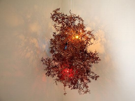 Dry grape twigs converted into an enticing lamp - Promoting Eco ...