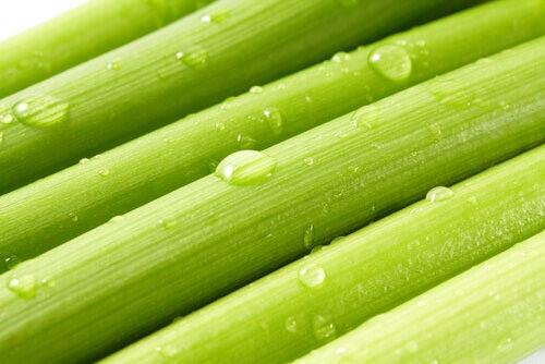 celerysve